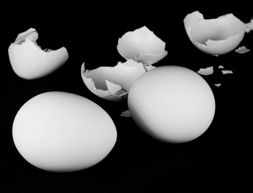 Haftpflichtversicherung Umzug – Wer zahlt für Schäden?